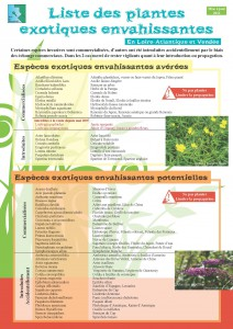 Liste plantes invasives MAJ 2013_Page_1_Page_1_Page_1